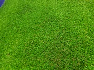 Ultimate Cool Synthetic Turf