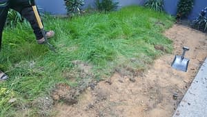 Removing Existing Weeds